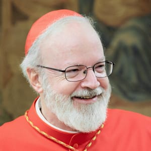 Cardinal Sean O'Malley photo