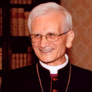 Cardinal Raffaele Farina photo