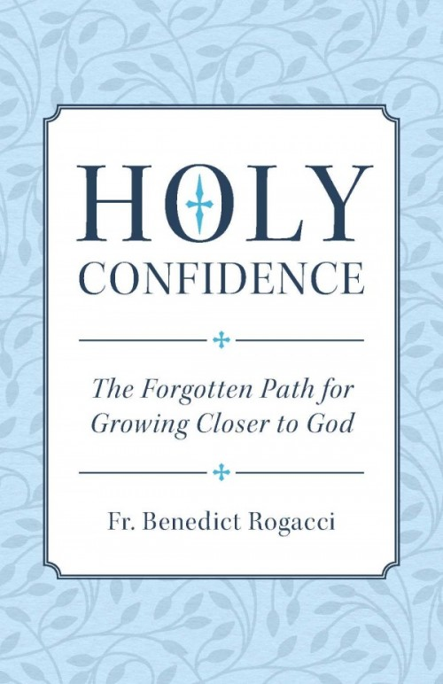 Image result for holy confidence