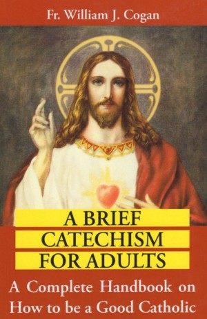 A Brief Catechism for Adults book cover