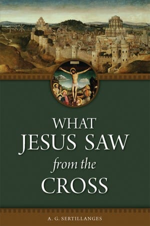 What Jesus Saw From the Cross book cover