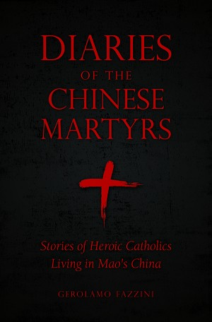 Diaries of the Chinese Martyrs book cover