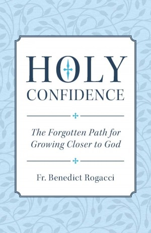 Holy Confidence book cover