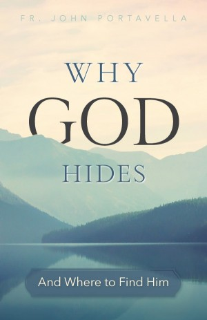 Why God Hides book cover