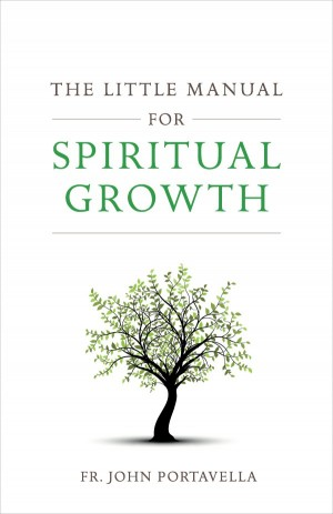 The Little Manual for Spiritual Growth book cover