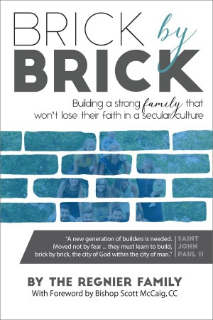 Brick by Brick book cover