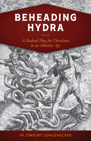 Beheading Hydra book cover