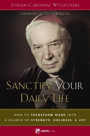 Sanctify Your Daily Life book cover