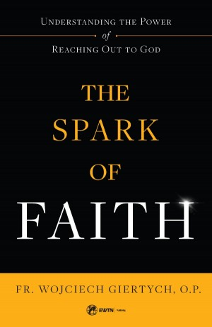 Spark of Faith book cover