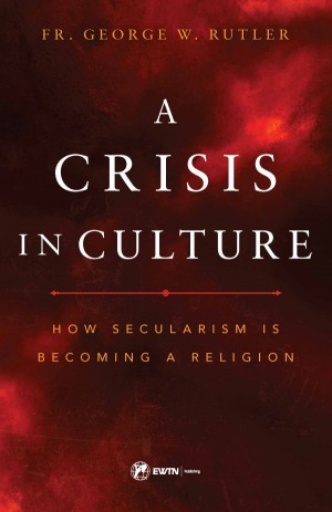 A Crisis in Culture book cover