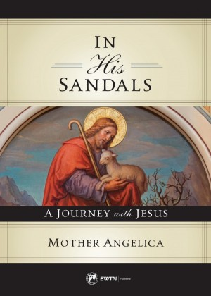 In His Sandals book cover
