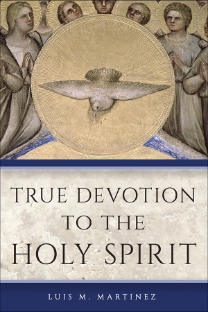 True Devotion to the Holy Spirit book cover
