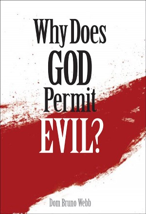 Why Does God Permit Evil? book cover