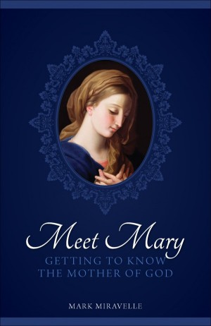 Meet Mary book cover