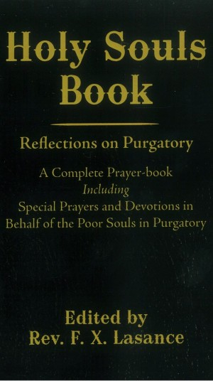 Holy Souls Book book cover