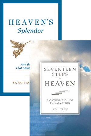 Heaven's Splendor Set book cover