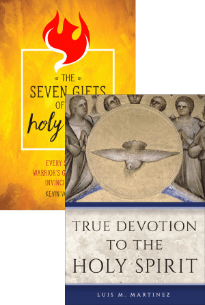 Holy Spirit Set book cover