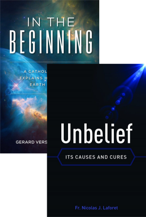 In the Beginning Set book cover