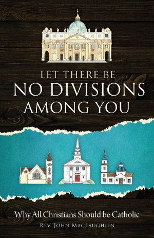 Let There Be No Divisions Among You book cover