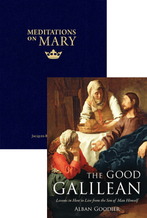 Meditations on Mary and Jesus Set bundle
