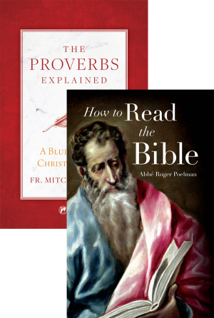 Proverbs Explained Set book cover