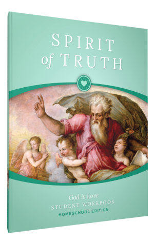 Spirit of Truth Home Edition Gr1 Student Workbook book cover