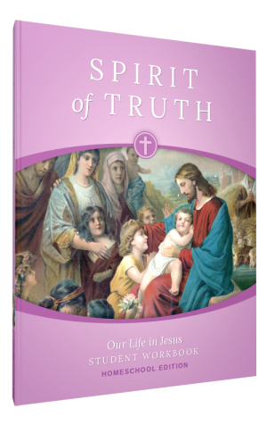 Spirit of Truth Home Edition Gr2 Student Workbook book cover