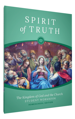 Spirit of Truth Home Edition Gr3 Student Workbook book cover