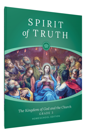 Spirit of Truth Home Edition Gr3 Parent Guide book cover
