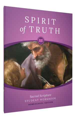 Spirit of Truth Home Edition Gr6 Student Workbook book cover
