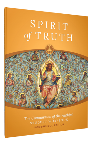 Spirit of Truth Home Edition Gr8 Student Set book cover