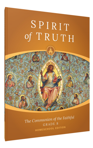 Spirit of Truth Home Edition Gr8 Parent Guide book cover