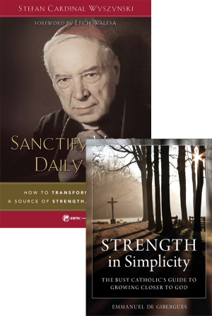 Sanctify Your Daily Life set book cover