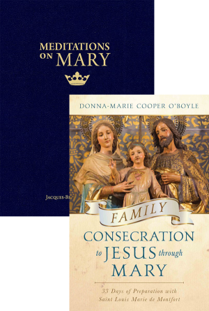 Meditations on Mary Set book cover