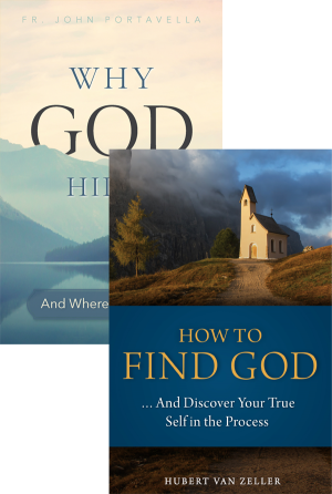 Why God Hides set book cover